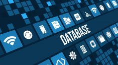 Types of Oracle Database Users